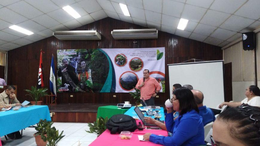 PRESENTAN LINEA BASE DE EMISIONES DE GASES DE EFECTO DE INVERNADERO PROVENIENTES DE LA  DEFORESTACIÓN Y  DEGRADACION FORESTAL DE NICARAGUA