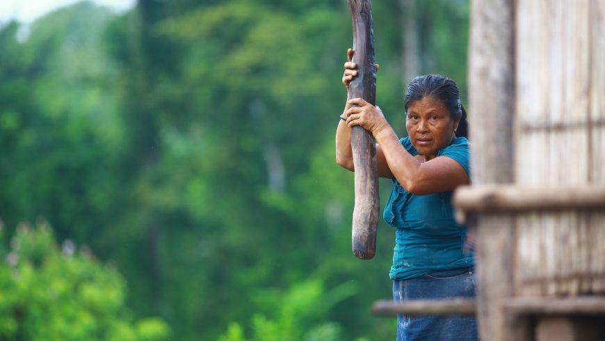 Charla Internacional sobre los retos del sector Agricultura y Bosques