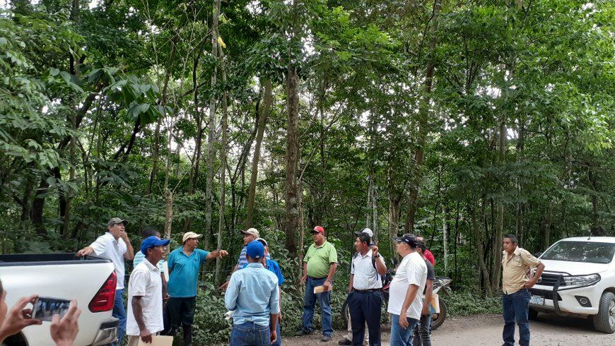 GOBIERNO FORTALECE CAPACIDADES PARA EL MONITOREO DE LA BIODIVERSIDAD