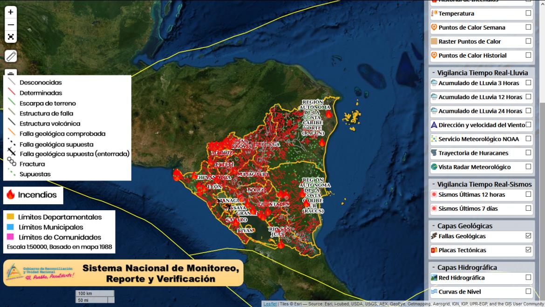 Geo visor de bosques y alertas tempranas de deforestación
